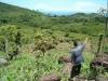 Testemunho de Delfin Luis Pas, licenciado em agronomia, beneficiário