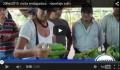 Embaixadora da UE visita projecto da Oikos no Peru