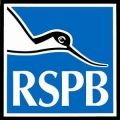 RSPB - Royal Society for the Protection of Birds