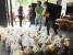 COVID-19: A Oikos está a distribuir alimentos e kits de higiene a 3500 pessoas carenciadas em El Salvador